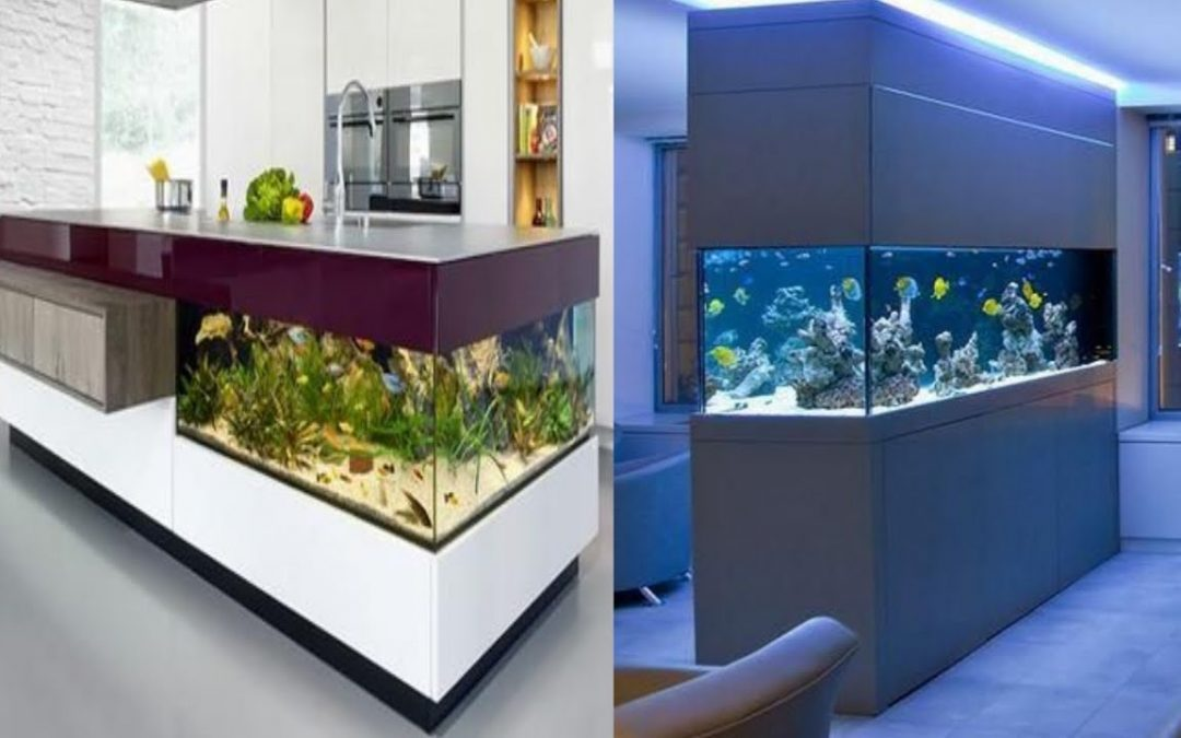 8 Creative Ways to Design Your Fish Tank