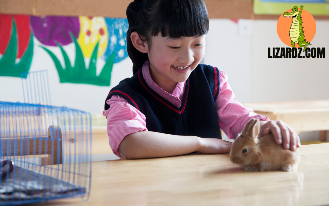 Should There Be Pets in the Classroom?