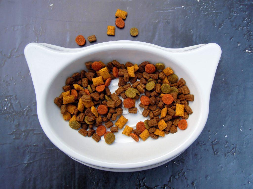 cat, food, pet food